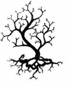 Yggdrasil, from www.vinlandsvolva.com